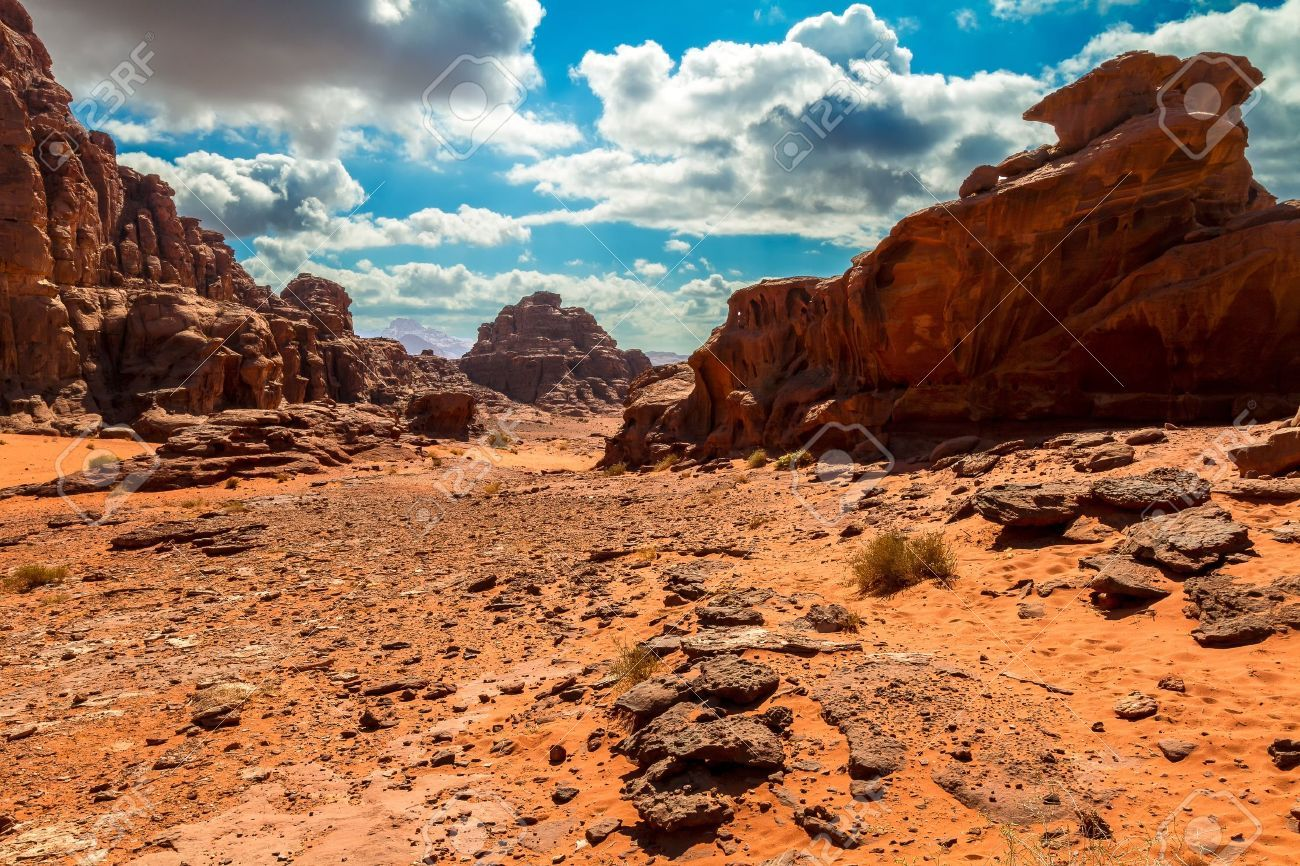 Stock Photo #wadirum