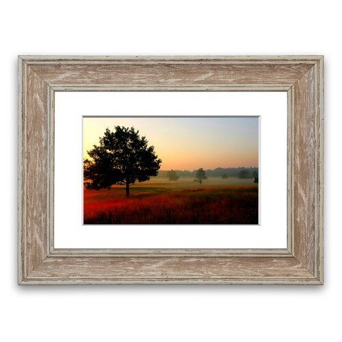 East Urban Home 'Autumn Scenes 1 Cornwall' Framed Photographic Print #autumnscenes 'Autumn Scenes 1 Cornwall' Framed Photographic Print East Urban Home Size: 93 cm H x 70 cm W, Frame Options: Walnut #autumnscenes