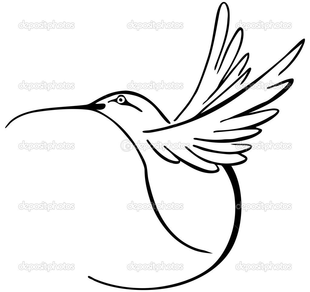 Hummingbird Coloring Pages | Hummingbird - Stock Illustration ...
