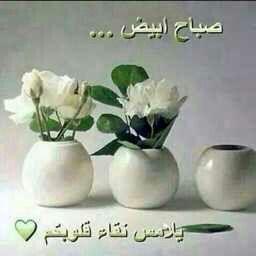 Pin By Mounachek Chekk On صباح الخير مساء الخير Decor Home Decor Vase