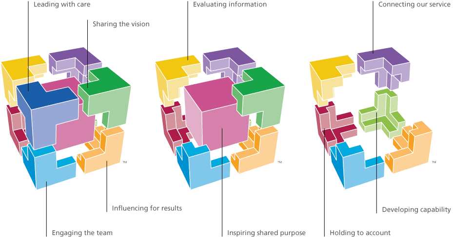Nine Dimensions Of The Healthcare Leadership Model With Images