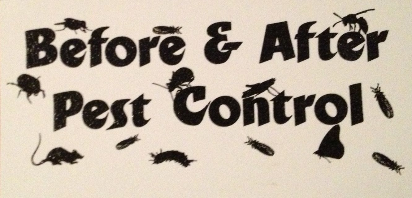 For all your pest control needs call Doug (504)9091628