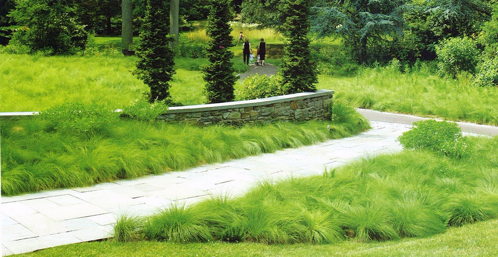 chanticleer sporobolus meadow contemprory gardens pinterest