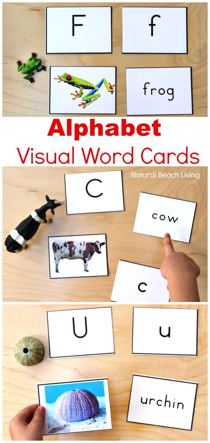 Alphabet Printable Picture Cards  Visual Word Cards is part of Montessori printables, Preschool printables, Alphabet flashcards, Alphabet worksheets, Word cards, Alphabet preschool - Alphabet Printable Picture Cards  Visual Word Cards, Picture Word Cards, Alphabet Flash Cards for Toddlers and Preschoolers, These Alphabet Printable Picture Cards are a great way for working on the alphabet, phonogram review, labeling, sight words, and speech with your child
