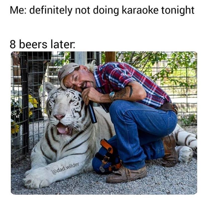 25 Memes That Will Only Be Funny If You Watched 'Tiger