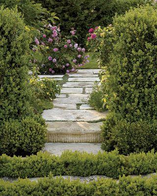 Pin By Juliana Pavesi On Gardens Rose Garden Design Garden Design Garden Landscape Design