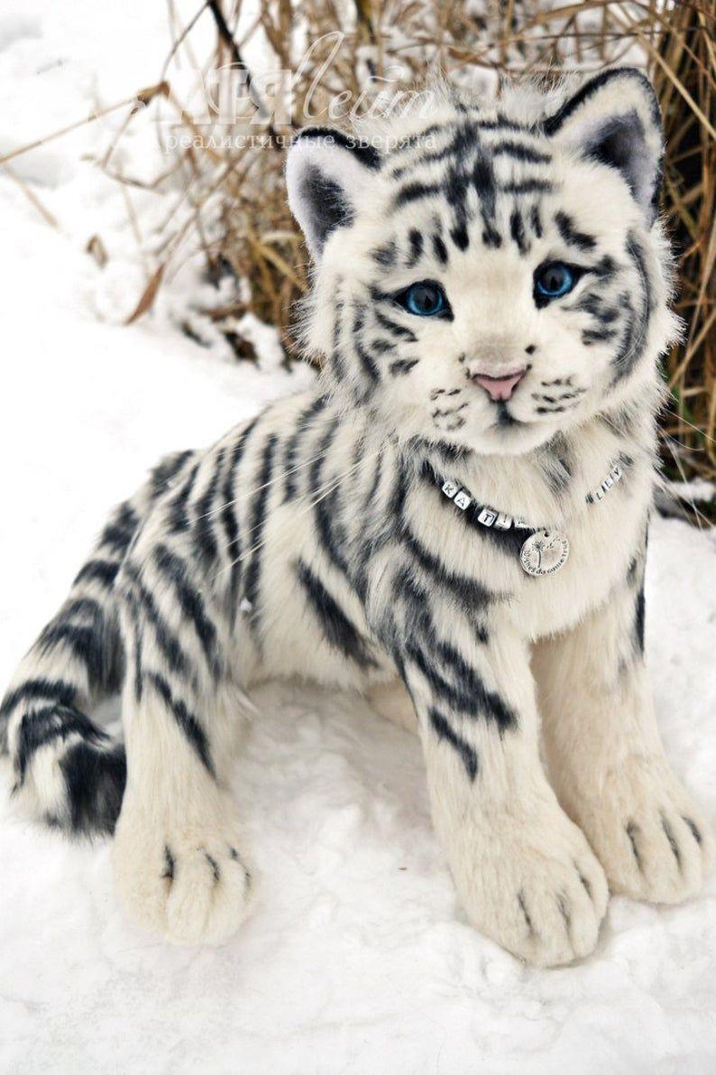 Para Ejemplo Para Pedido Tigre Blanco Medio Animal Real Etsy Tiere Susse Tiere Niedliche Tiere