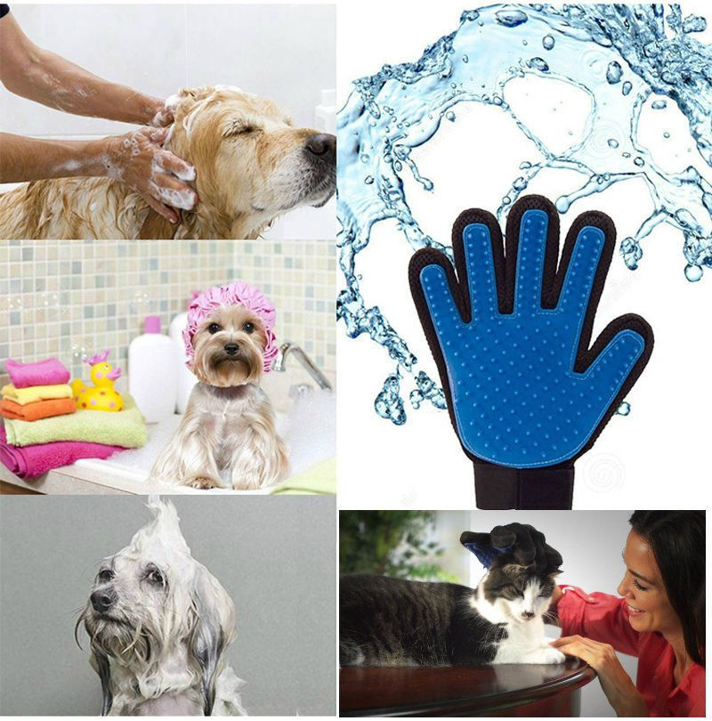 2 89 Gbp Pet Grooming Massage Bath Deshedding Glove Brush Comb For Dogs Cats Rabbits Pets Ebay Home Garden Cat Grooming Pet Shed Cat Massage