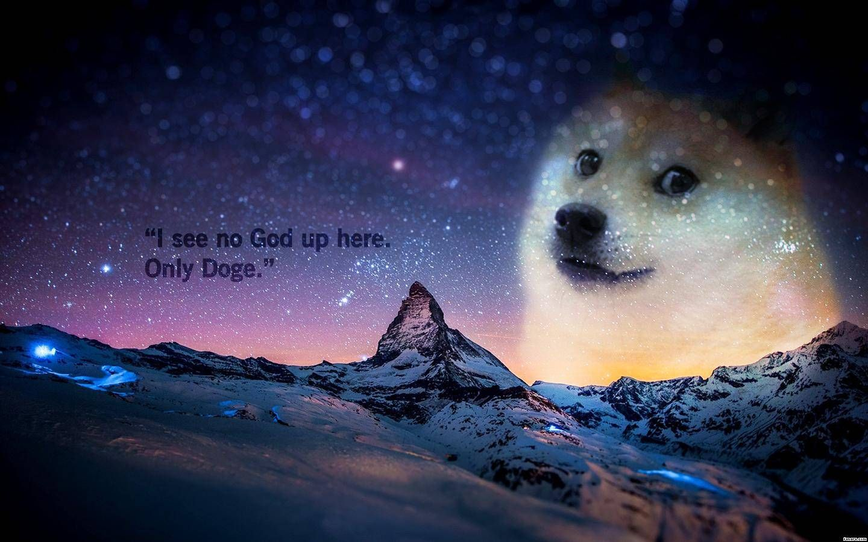 Pin by Kiu Mint on Backgrounds Desktop wallpaper, Dog