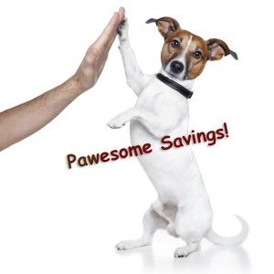 Pawesome Saving Is Necessary In Ruff Economic Times Savings Economic Times Pets