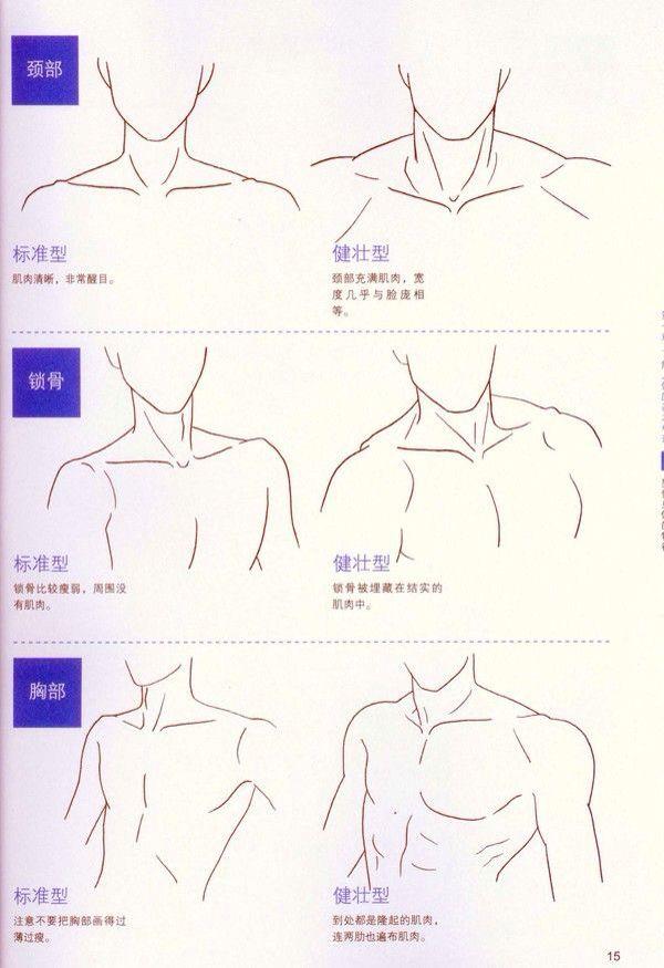 Pin de Mei - Cotobuki en Anime manga | Pinterest | Dibujo, Anatomía ...
