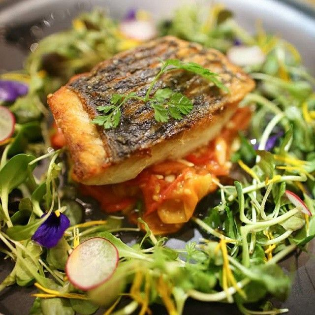 Pan seared sea bass, served with duo of cherry tomatoes and salad of sprouts and micro greens in balsamic dressing.