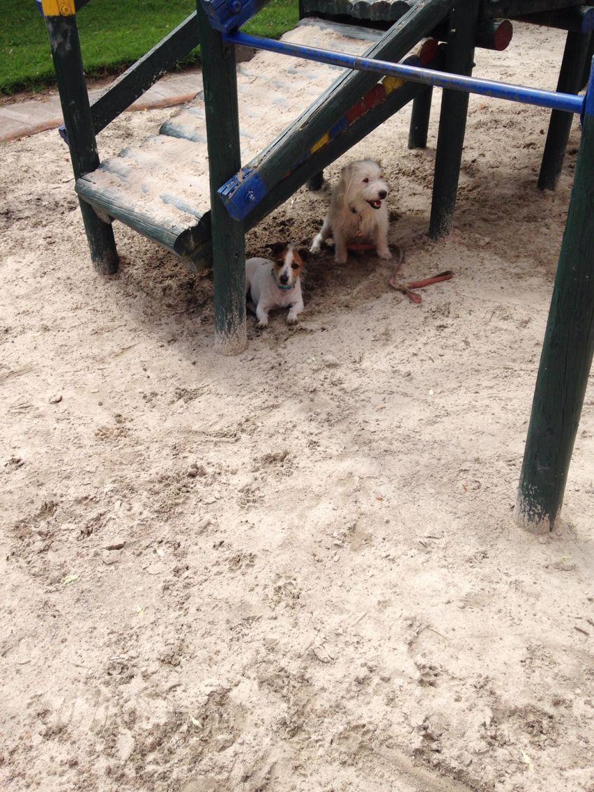Amamos la arena!