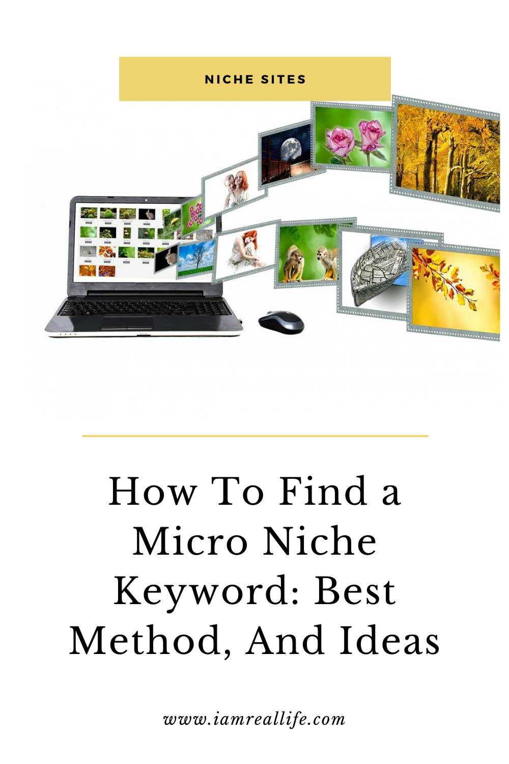 How To Make Money With Micro Niche Sites