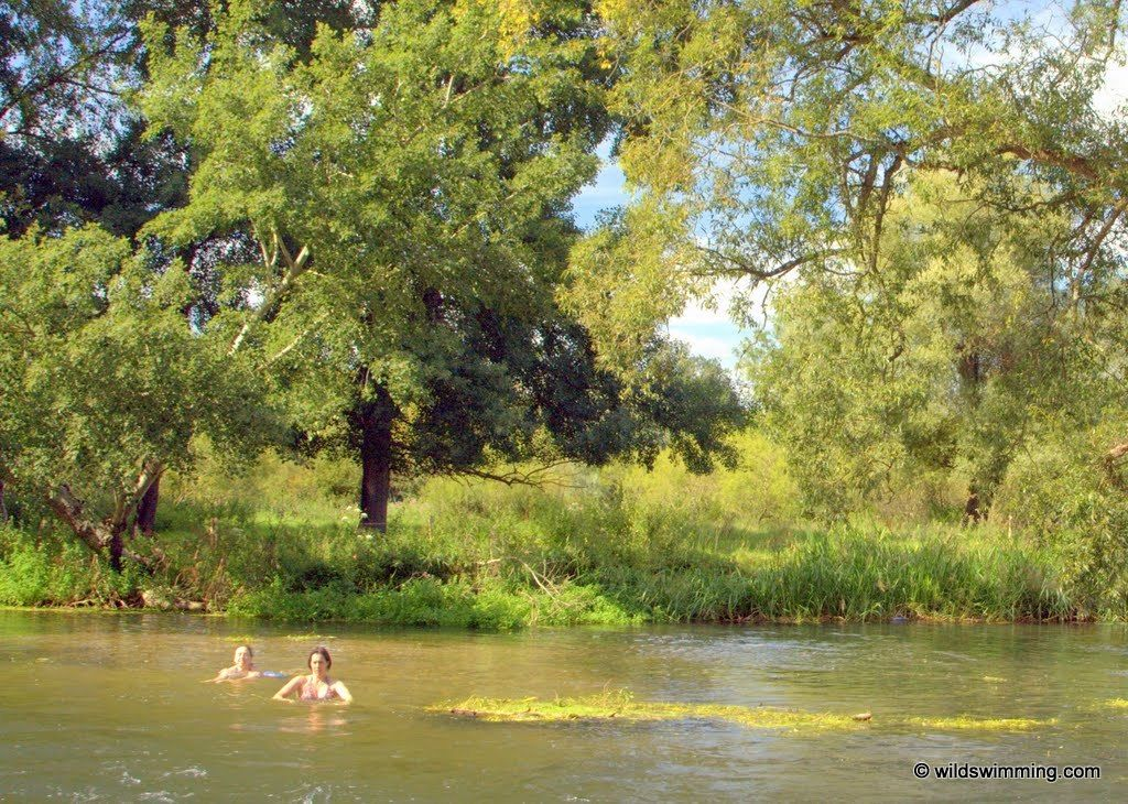 Figheldean, Avon  | Wild Swimming - outdoors in rivers, lakes and the sea