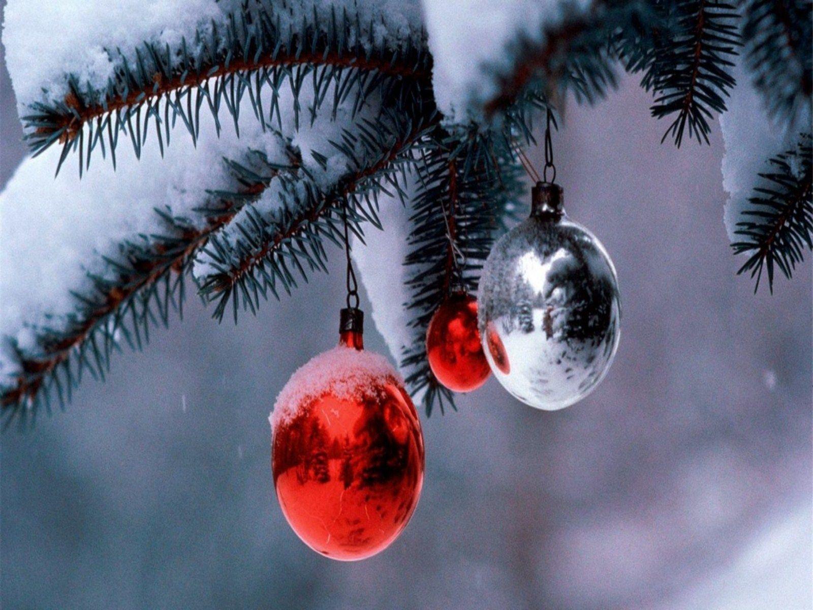 Snowy Christmas Scenes   Free Download HD Christmas Snow Scene ...