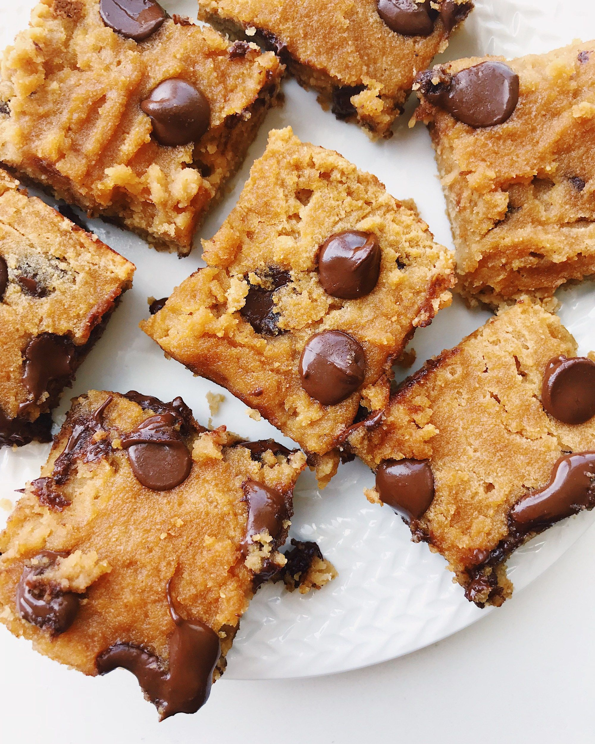 Coconut Flour Chocolate Chip Bars Gluten Free Dairy Free
