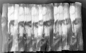 Afbeeldingsresultaat voor papier biennale