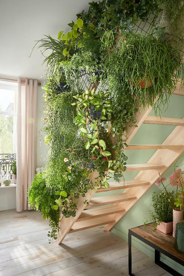 Dans Le Salon La Montee D Escalier Devient Un Veritable Jardin Suspendu Plant Decor Indoor Garden Stairs Interior Plants
