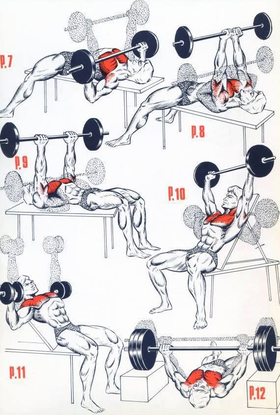 Chest WORKOUT TIPS #chestworkouts