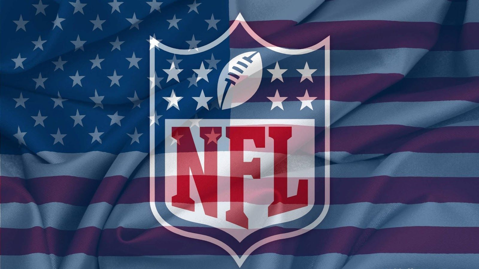 Image result for nfl logo flag