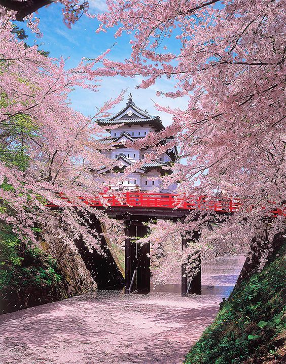 Top 10 Spots That Will Make You Fall In Love With Osaka Hirosaki Japan Travel Japan