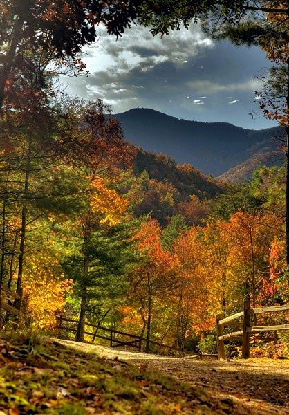 Autumn In Appalachia. This Is The Way God Meant For The Mountains To Look,  Not Flattened And Carries Away! FALL IS SO BEAUTIFUL** Jerry G
