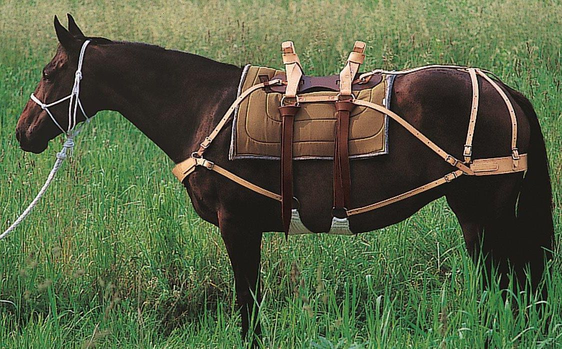 Deluxe Pack Saddle with Leather