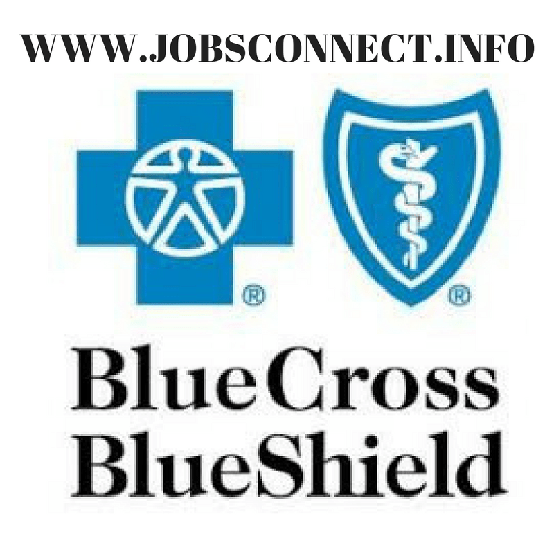 Jobsconnect Info Blue Cross Blue Shield Medical Logo Medical Logo Design