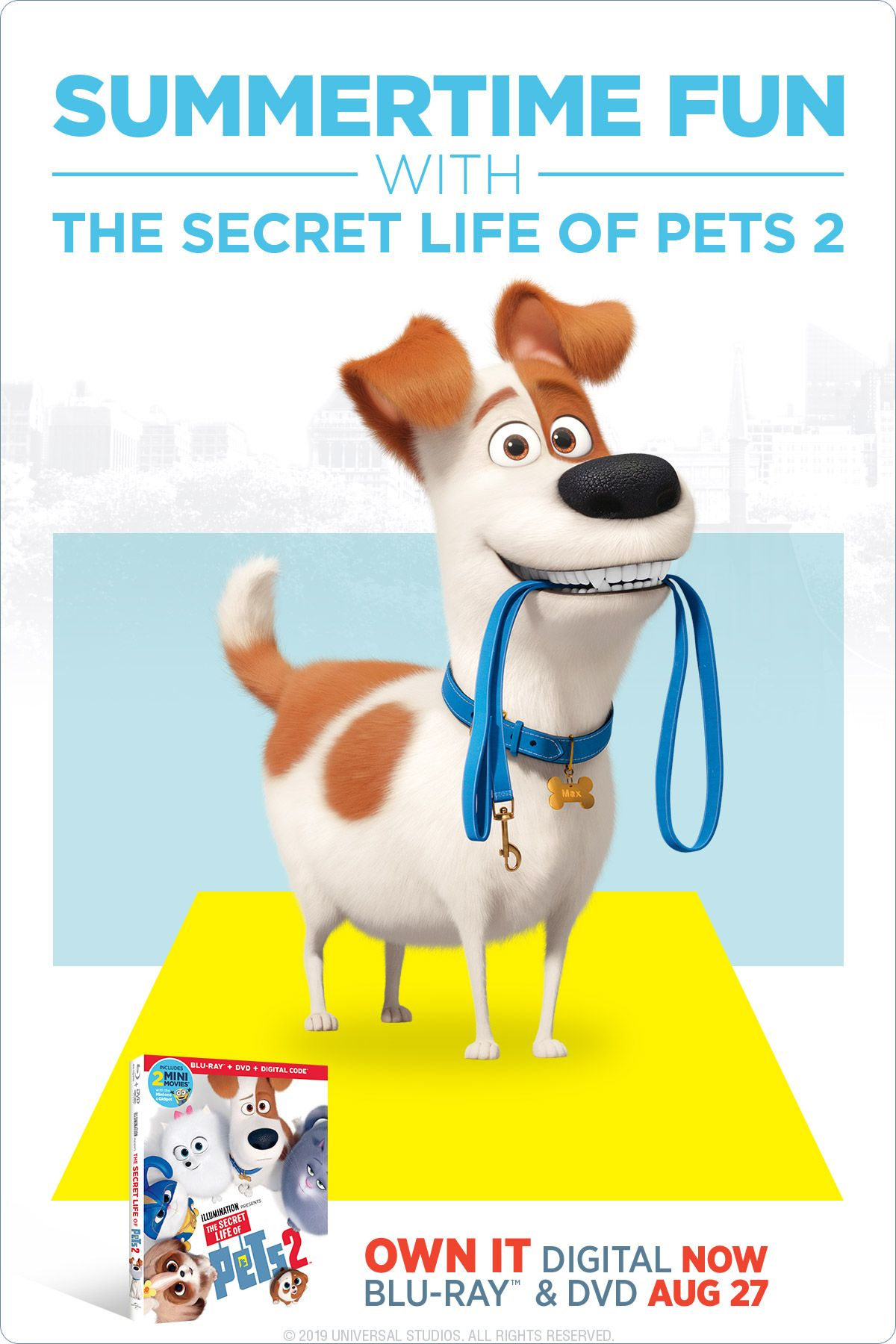 9 Ways To Turn The Secret Life Of Pets 2 Into Summertime Fun With Your Kids Secret Life Of Pets Secret Life Summertime Fun