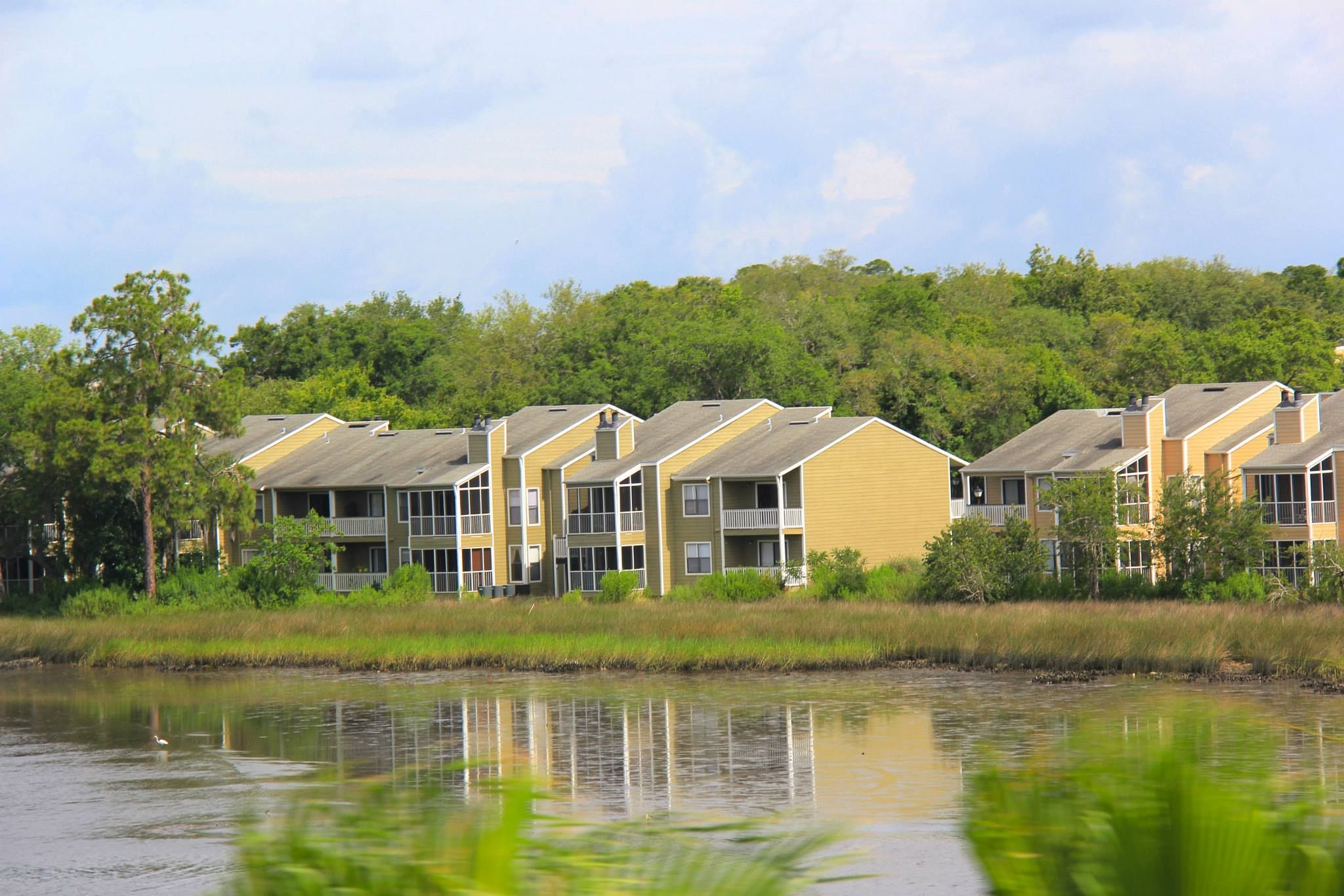 Island Pointe Apartments Waterfront Living Luxury Apartment