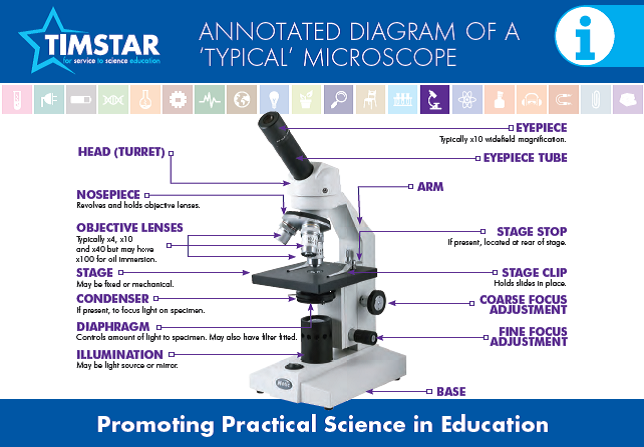 Microscopes timstar top tips information pack pinterest microscopes ccuart Image collections