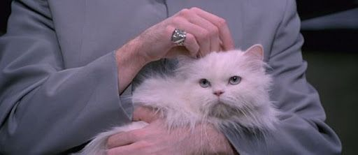 Mr Bigglesworth From Austin Powers Cats Evil Cat Dr Evil Cat