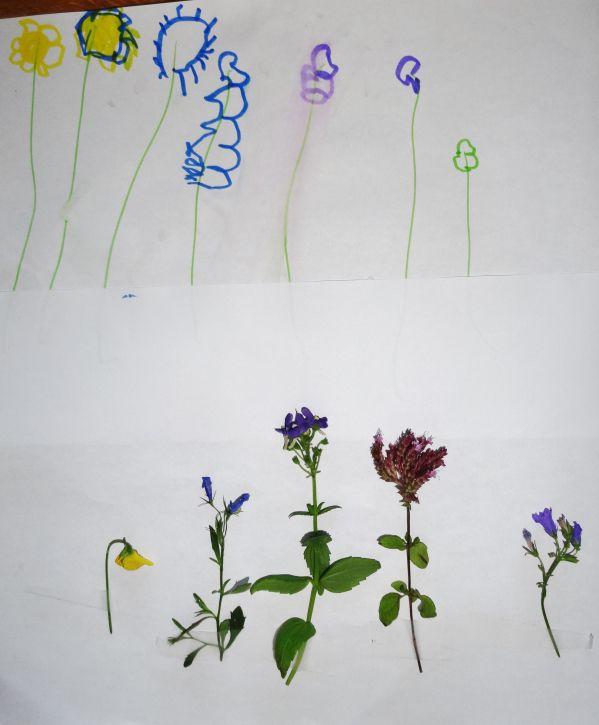 fleurs : dessins puis collage