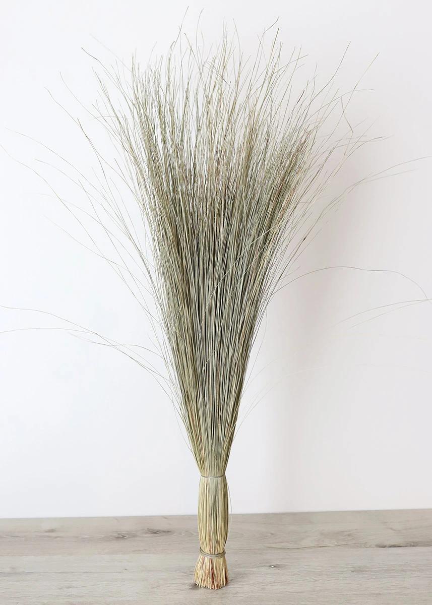 Preserved Green Dune Grass Sea Grass Decor Grass Decor Pampas Grass Decor