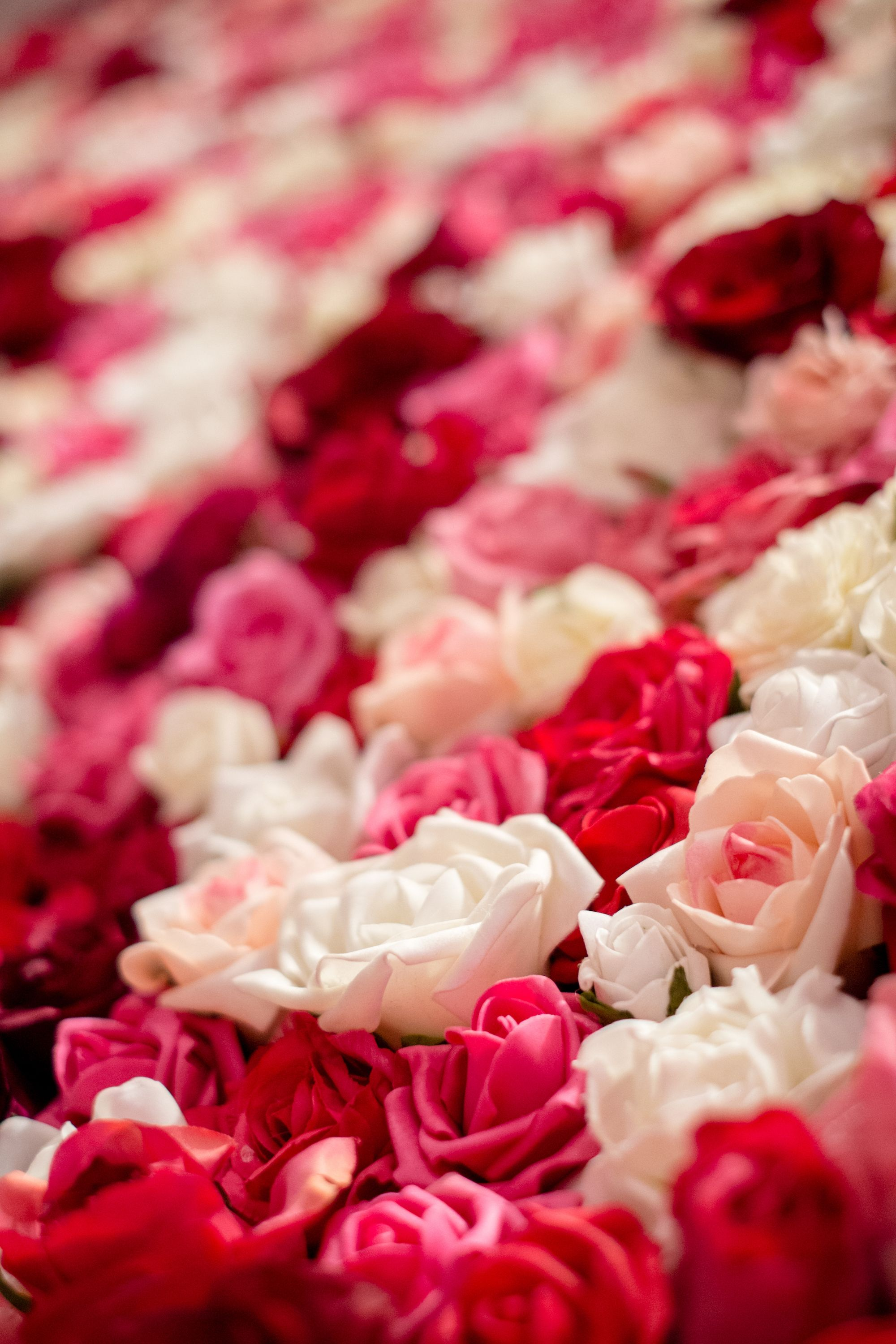 Want a dreamy rose wall at your wedding? Itihaas can transform a ...