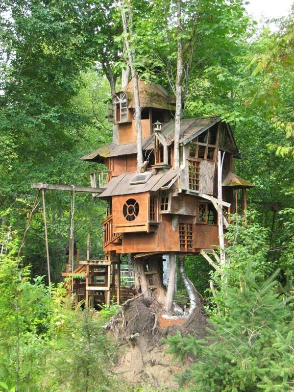 This treehouse in Washington looks a bit haunted to me.