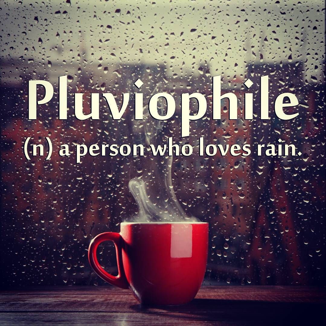 """""""Perfect for a rainy day!"""