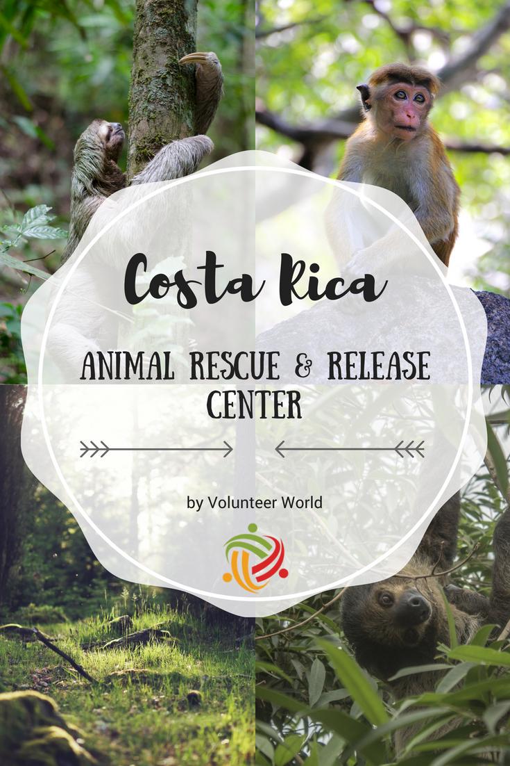 Animal Rescue Release Center Volunteer In Costa Rica 2020 Animal Rescue Volunteer Tourism Volunteer Travel