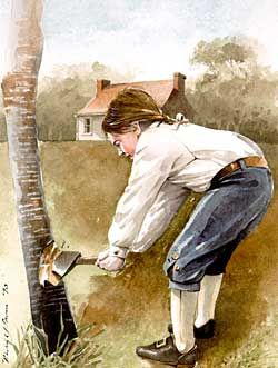 George Washington and the Cherry Tree: A false story, but ...