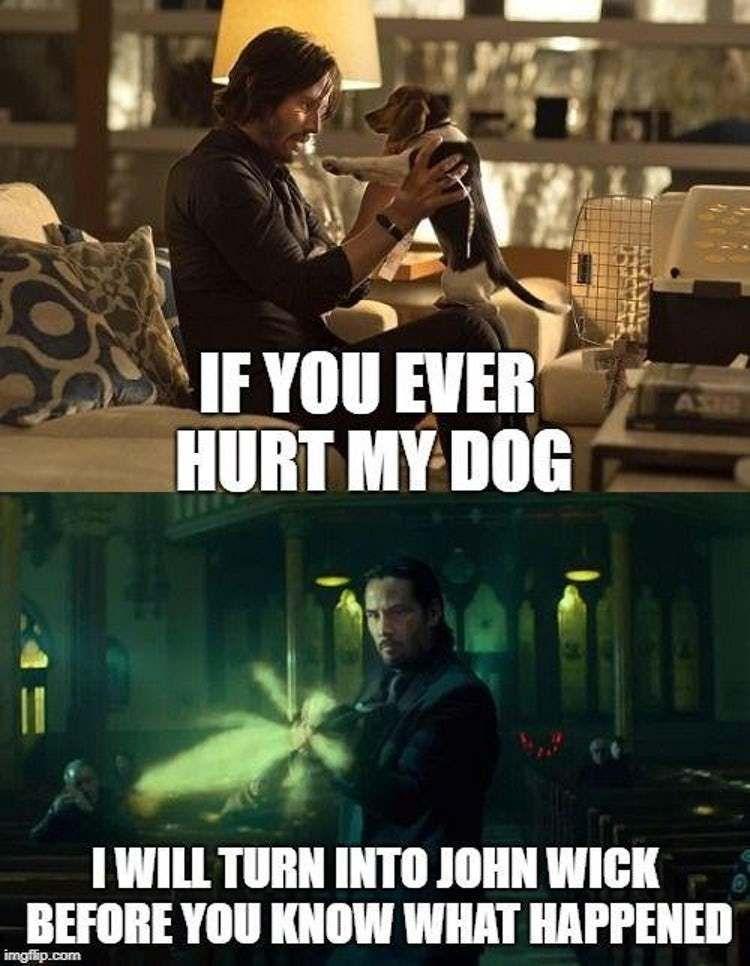 15 John Wick Memes John Wick Meme Keanu Reeves John Wick Memes