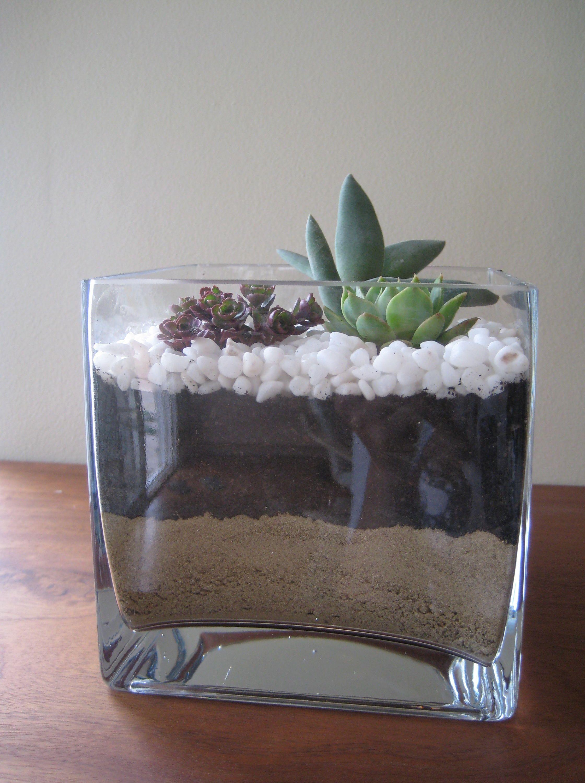 Image Result For Square Glass Vase Ideas Vasesdecorideas Square