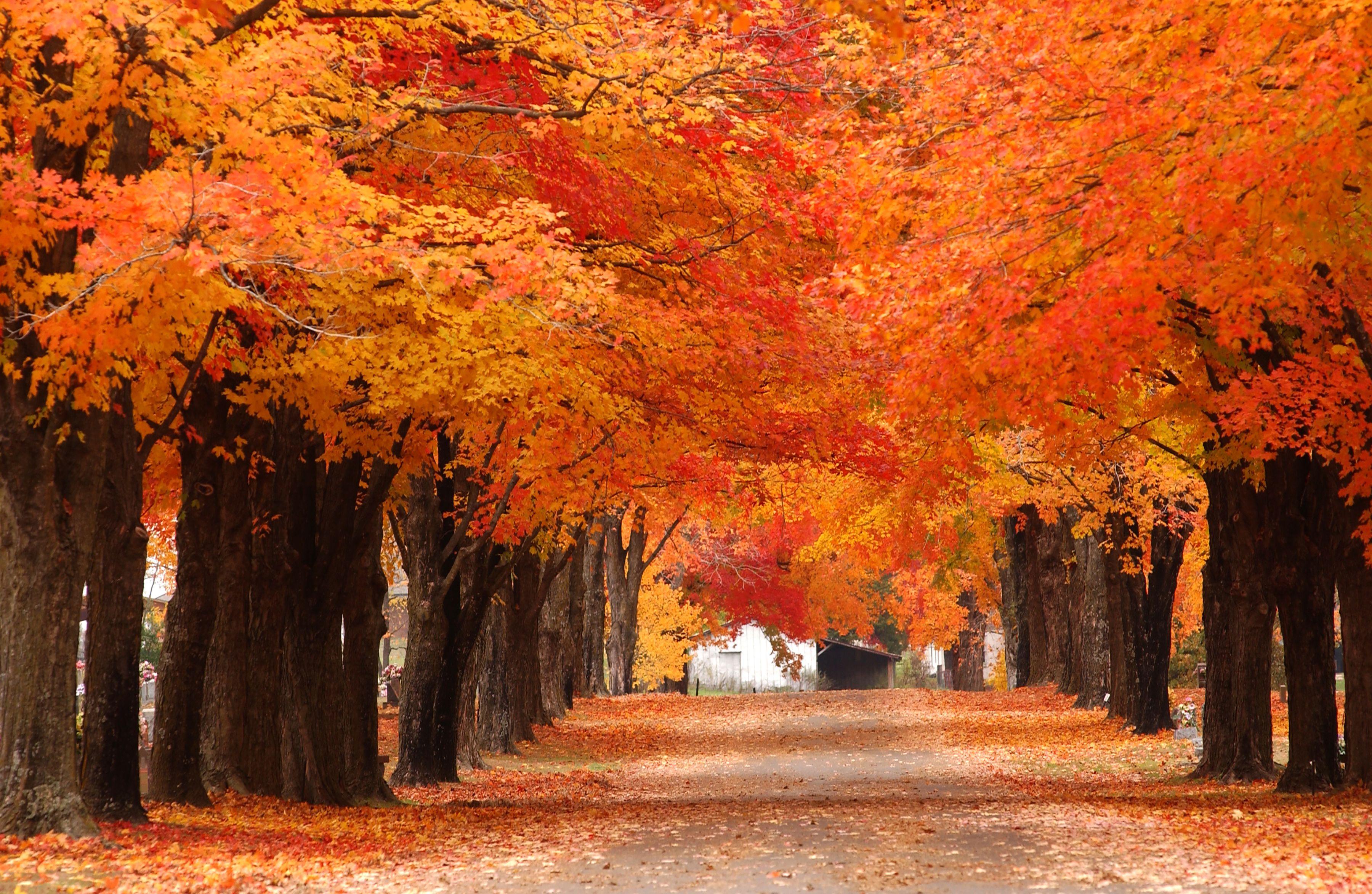 roads  traveled     scenic drives 3600 x 2346 · jpeg