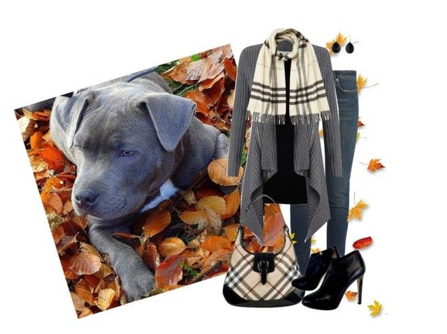 """Autumn Animals"" by pauirjules ❤ liked on Polyvore featuring Yves Saint Laurent, Velvet by Graham & Spencer, Autumn Cashmere, Burberry, Giuseppe Zanotti and Ippolita"