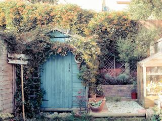 A handmade cottage: garden craft ~ This Lovely Lady has a super tutorial on how to make rose hip oil. Really wonderful!