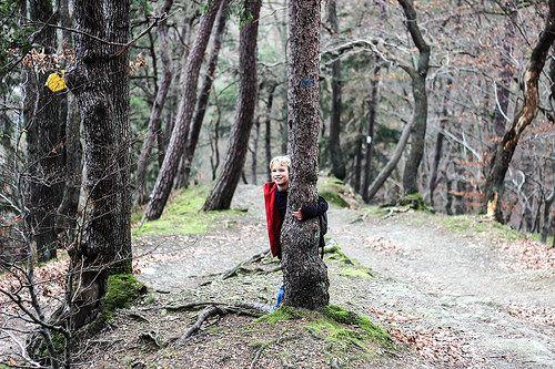 Ardennen - Groene Halte wandeling