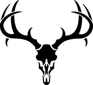 Deer 20skull 20drawing Deer Pics Pinterest Antlers
