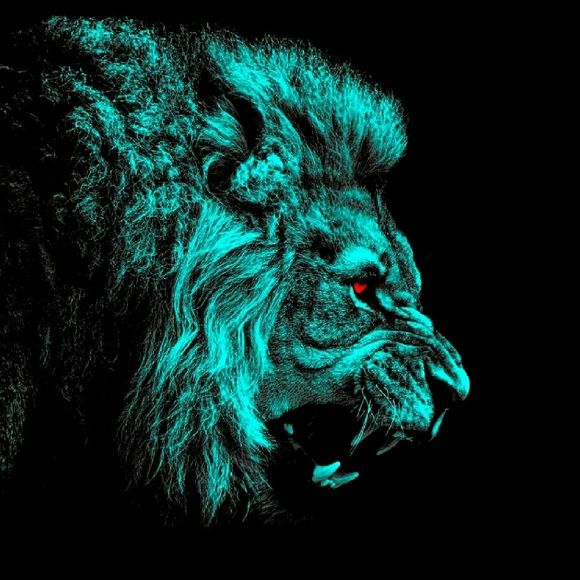 Meet Your Posher Sydney Lion Wallpaper Lion Hd Wallpaper Animal Wallpaper Colourful lion wallpaper hd
