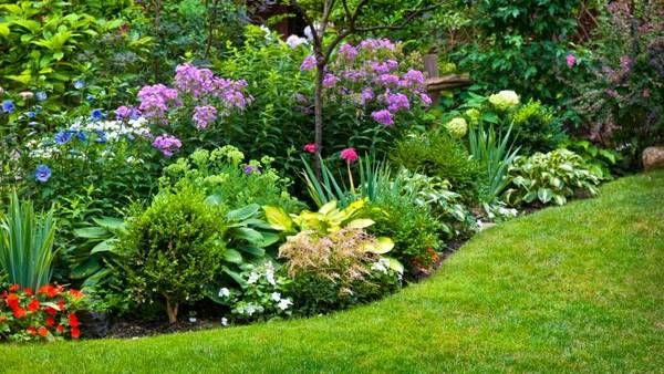 1000  ideas about parques y jardines on pinterest