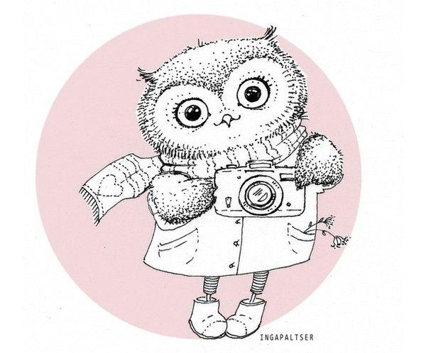 owl_600x498_055
